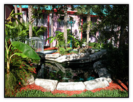 A fish pond in the lush tropical landscaping of the Radisson Resort